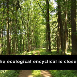 Anticipation mounts for the Pontiff's encyclical on ecology