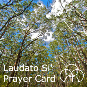 LS Prayer Card
