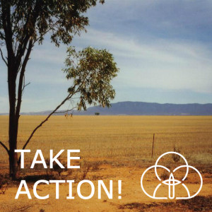 ToL take action - sq