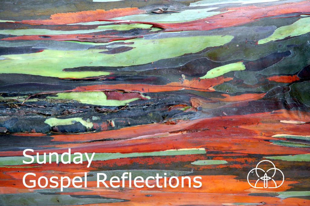 ToL Gospel Reflections - wide